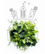 meisterrein-greenworks